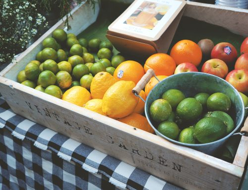 Easy Healthful Citrus Salad